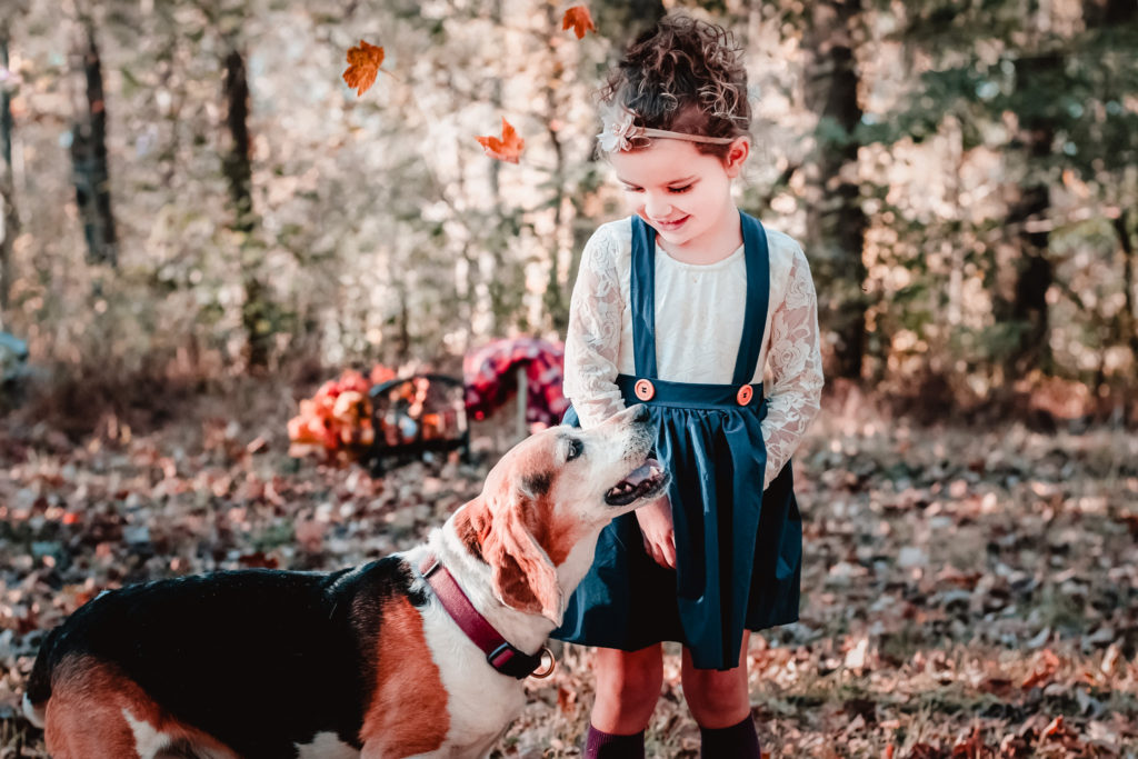 little girl looks lovingly at beagle in autumn woods near pittsburgh