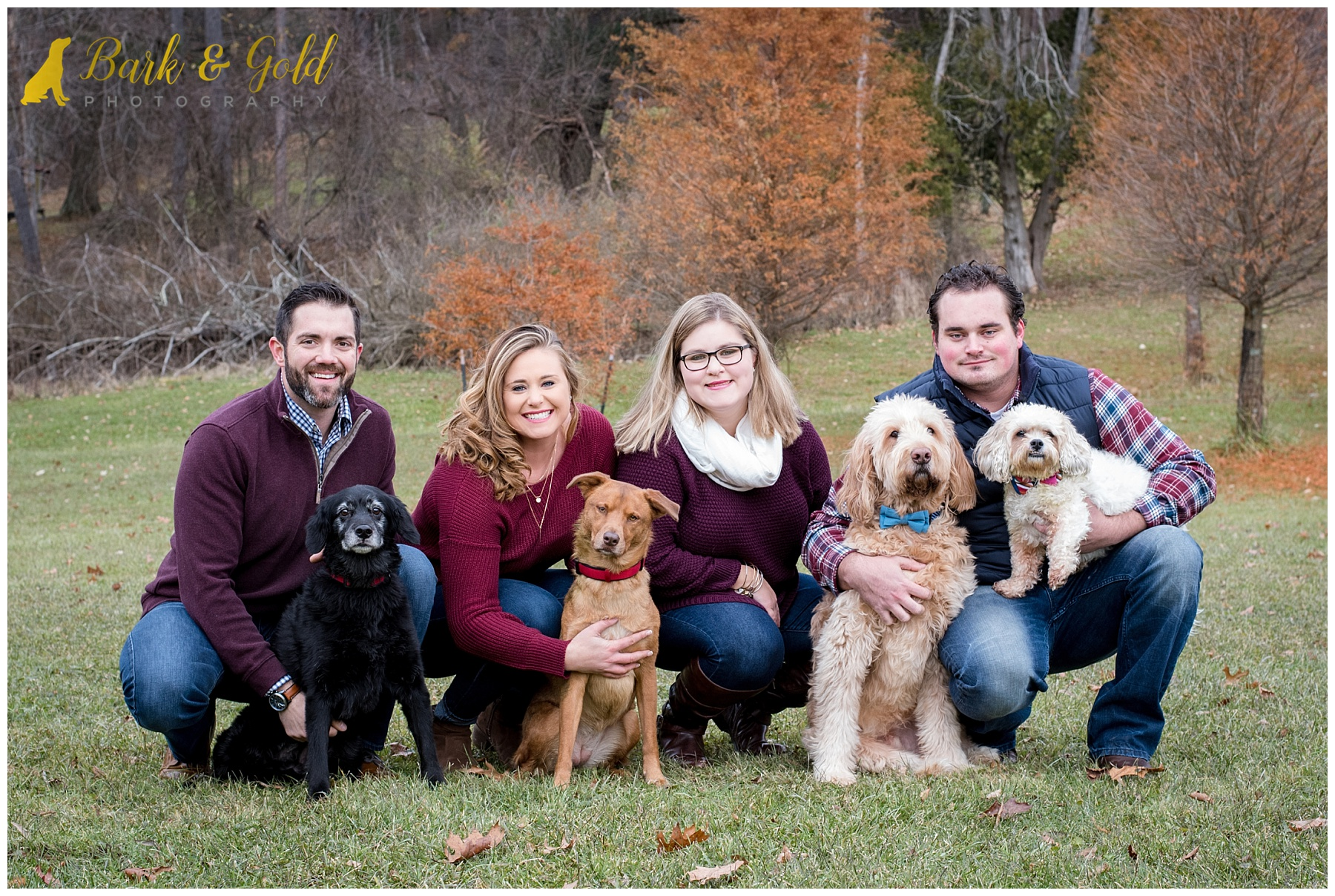 siblings pose with four dogs in a field during a fall portrait session at North Park in Gibsonia