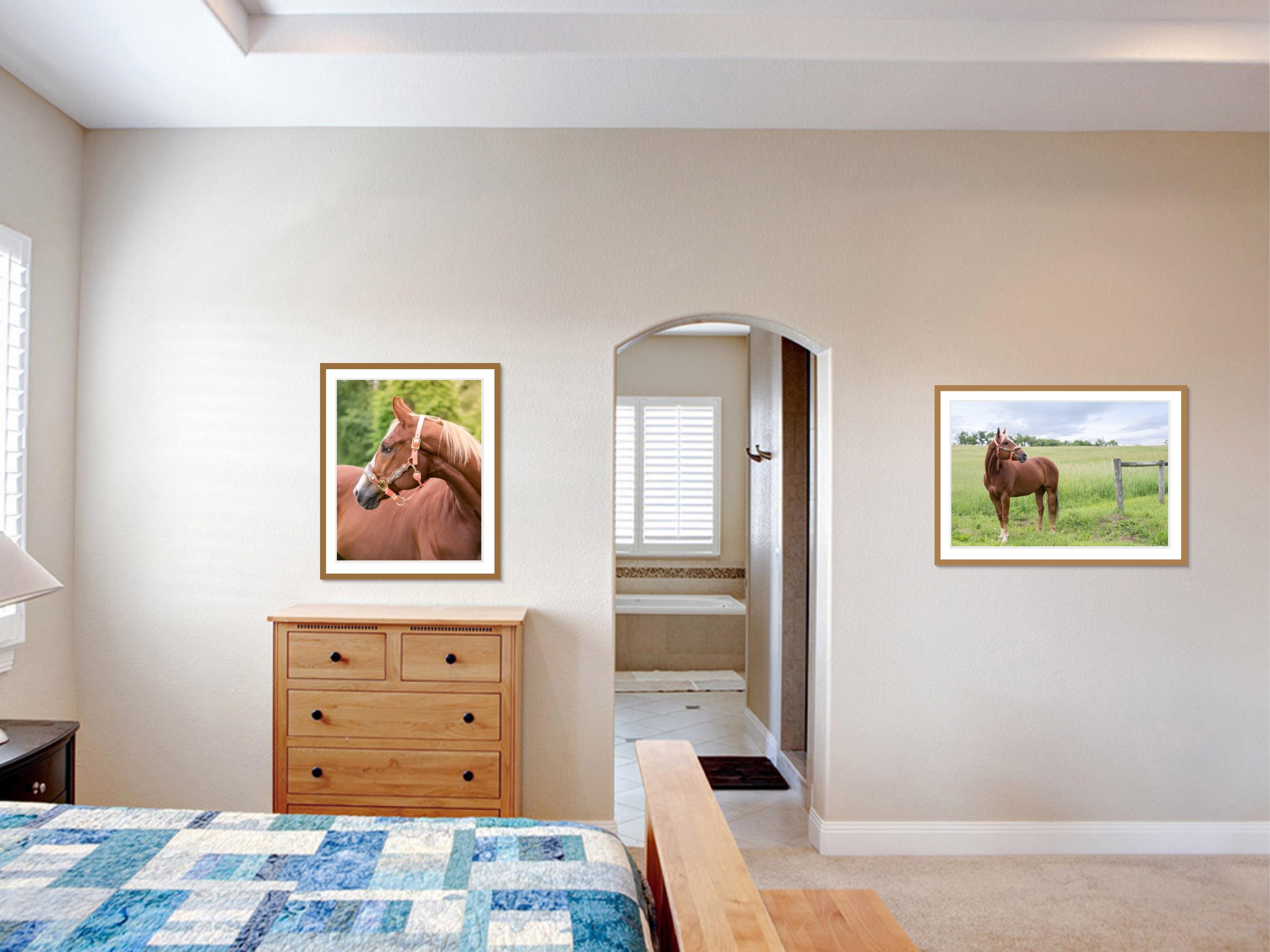 framed wall art of a horse on bedroom walls