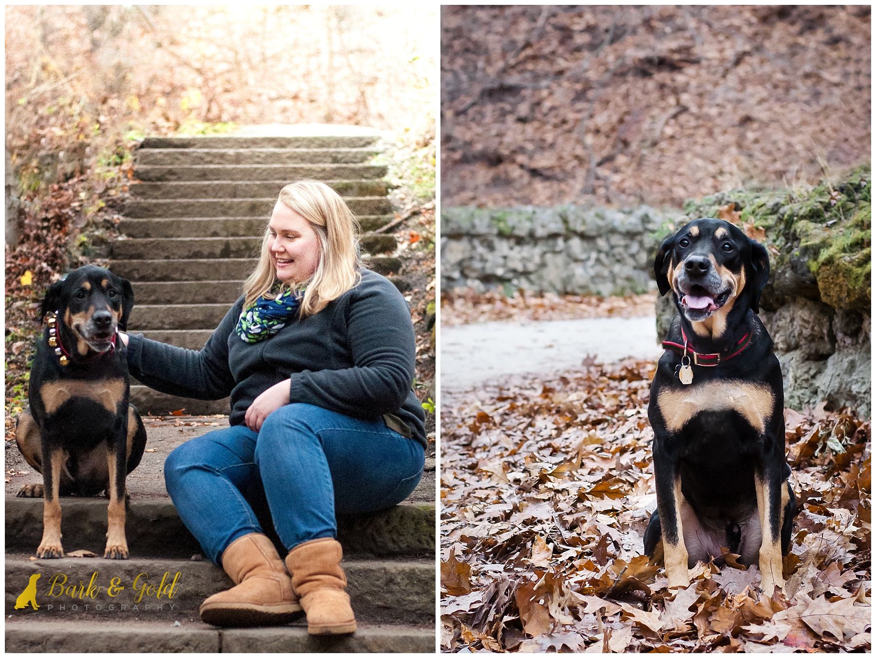 rottweiler-coonhound mix with owner at schenley park in pittsburgh