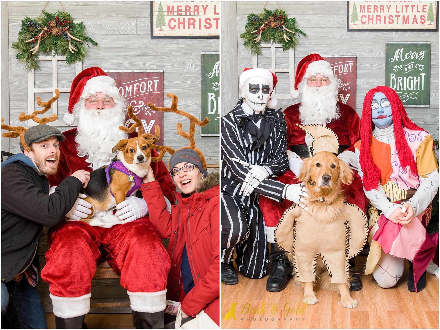 holiday costumes and dogs during 2017 pet photos with Santa at Petagogy
