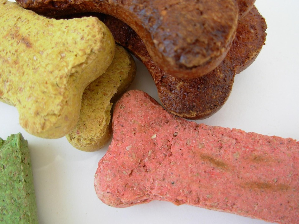 dog bone treats