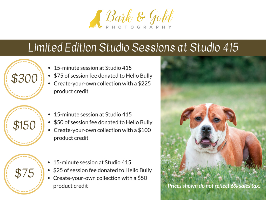 advertisement for limited edition sessions at Pittsburgh's Studio 415