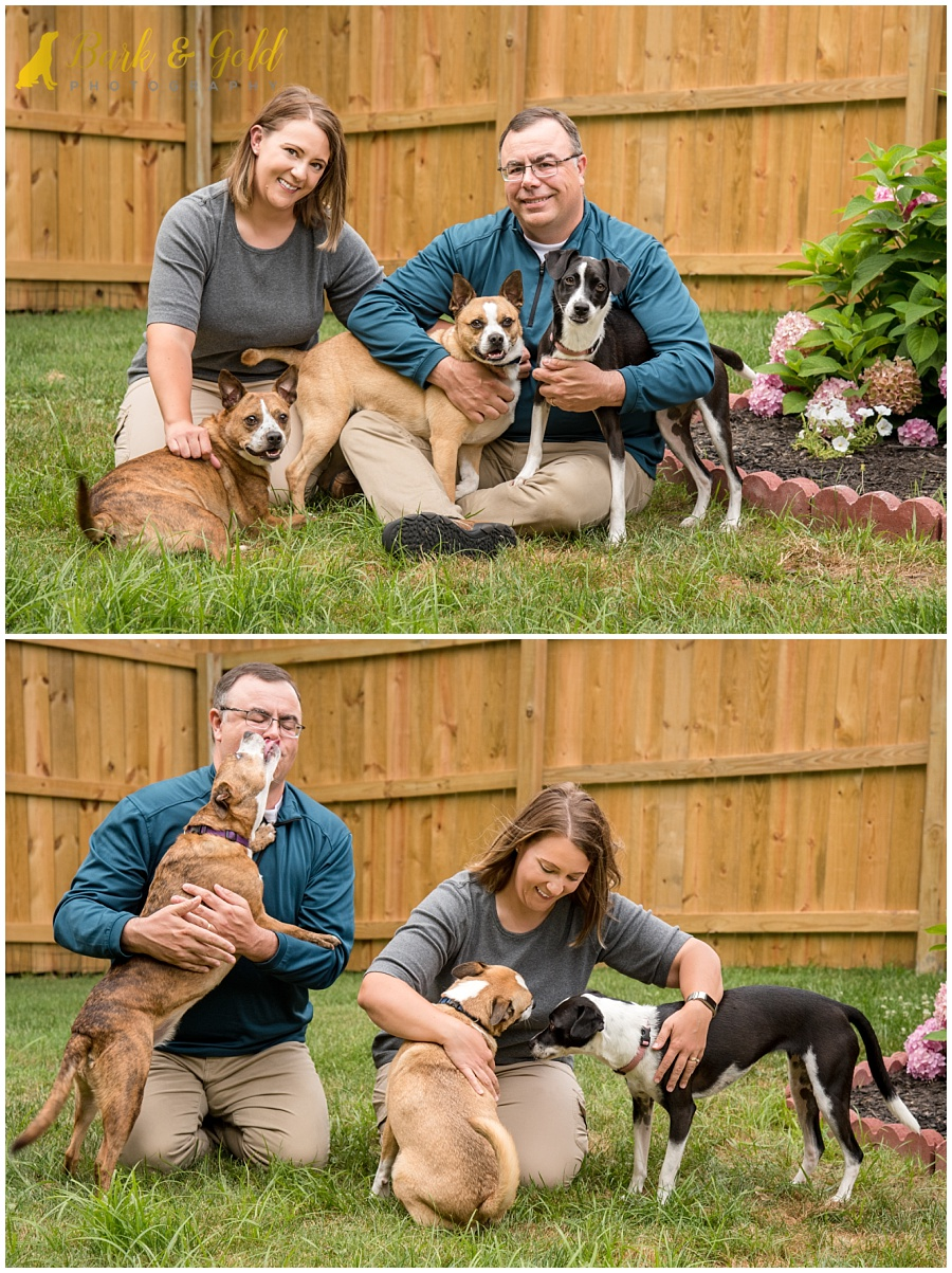 family portrait and candid with three dogs during backyard session near Pittsburgh