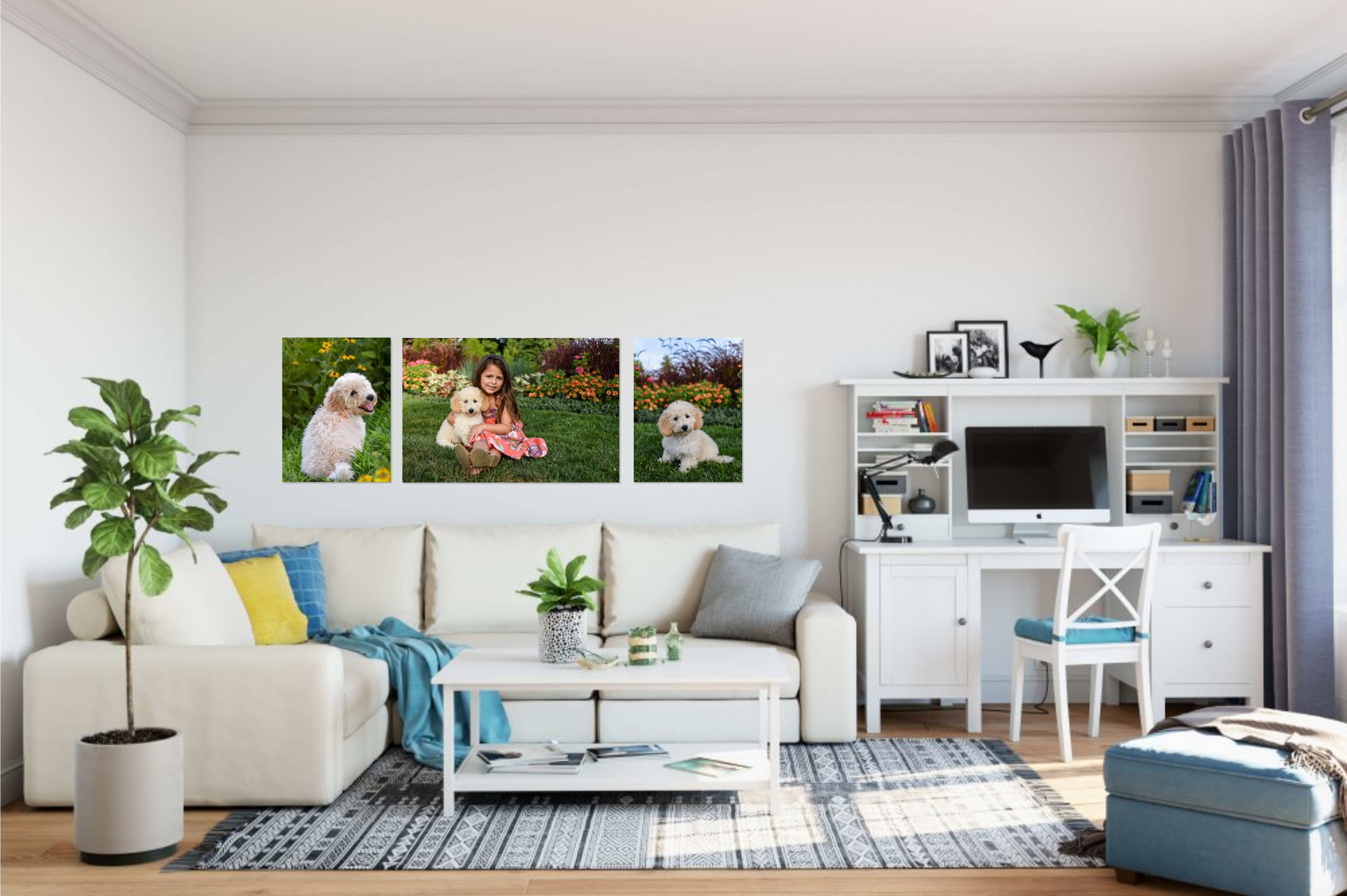 three gallery-wrapped canvases in modern living room