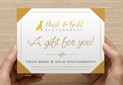 Bark & Gold Photography gift certificate