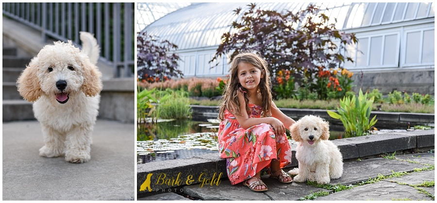 little girl and goldendoodle puppy at the reflecting pond at Phipps Conservatory in Pittsburgh