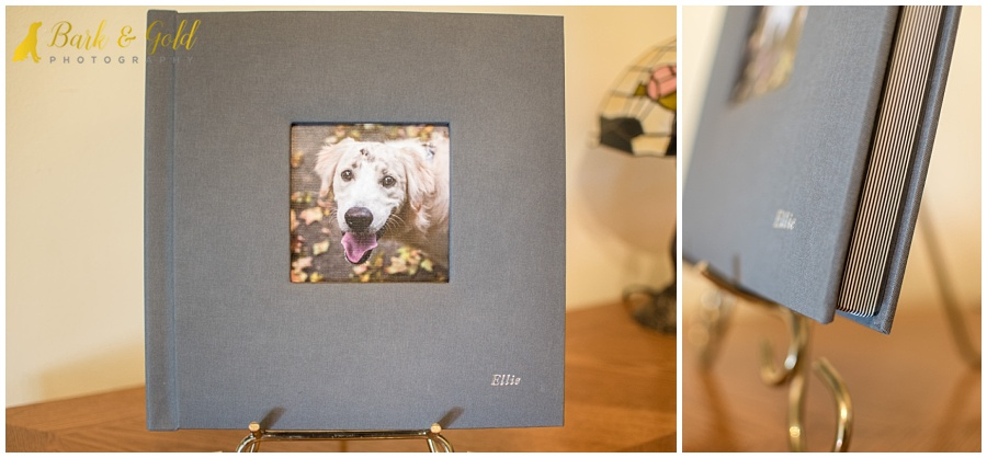 10x10 fine art album with slate-colored luxury linen cover and puppy photo