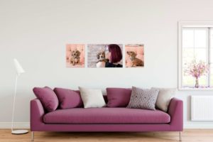 gallery-wrapped canvases grouping above deep pink sofa