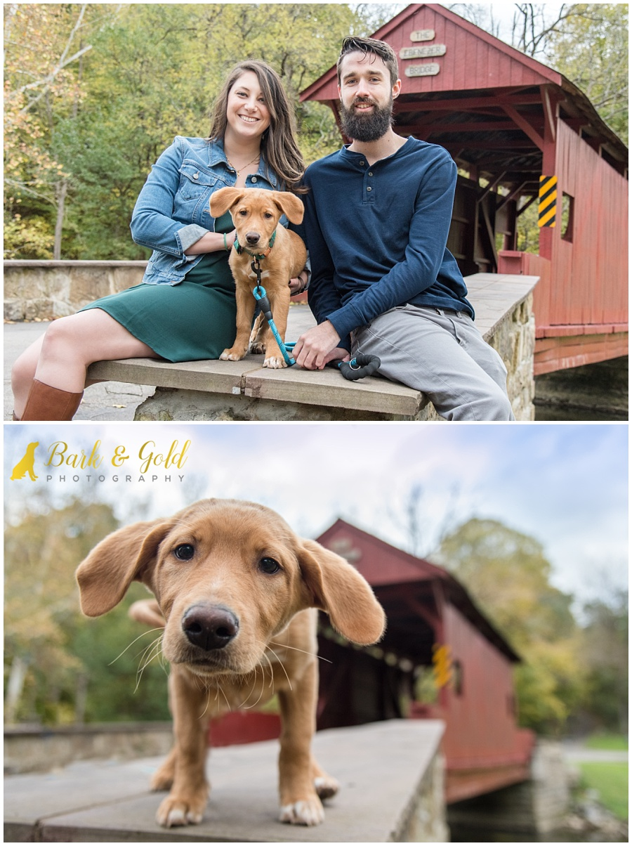 young couple with adorable puppy at Mingo Creek Park near Pittsburgh