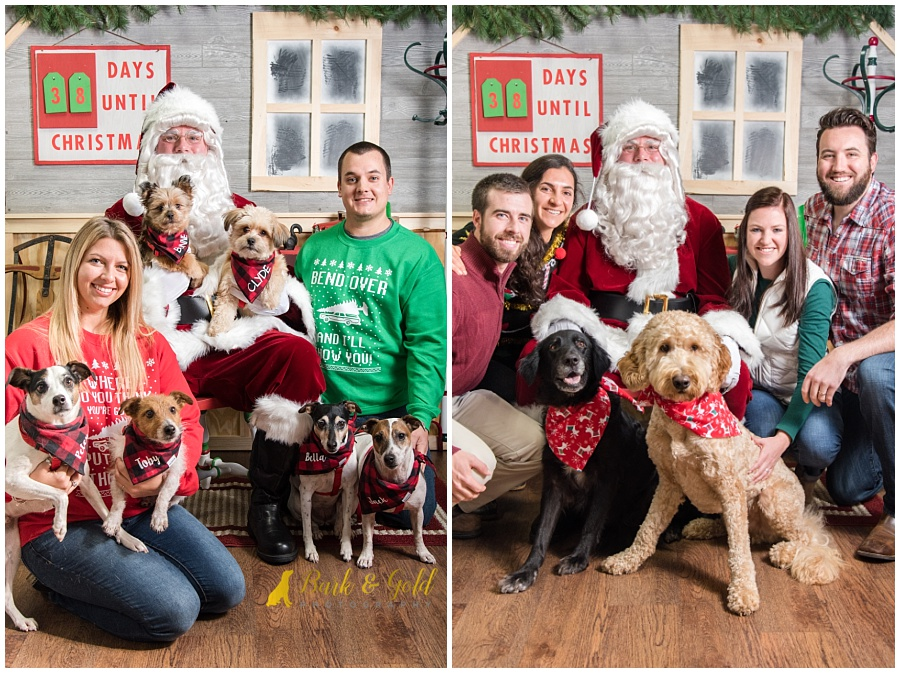 families and friends posing with dogs at Petagogy Greensburg's pet photos with Santa event
