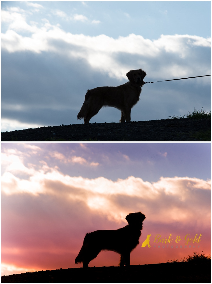 before and after of colorful skies during a Silhouette Sunset Session at Mingo Creek Park
