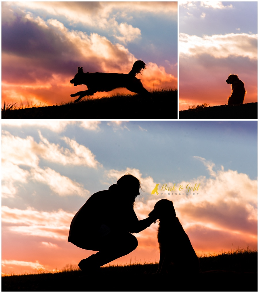woman loving on dog during a Silhouette Sunset Session at Mingo Creek Park