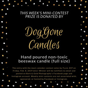DogGone Candles mini-contest prize announcement
