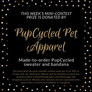 PupCycled mini-contest prize announcement