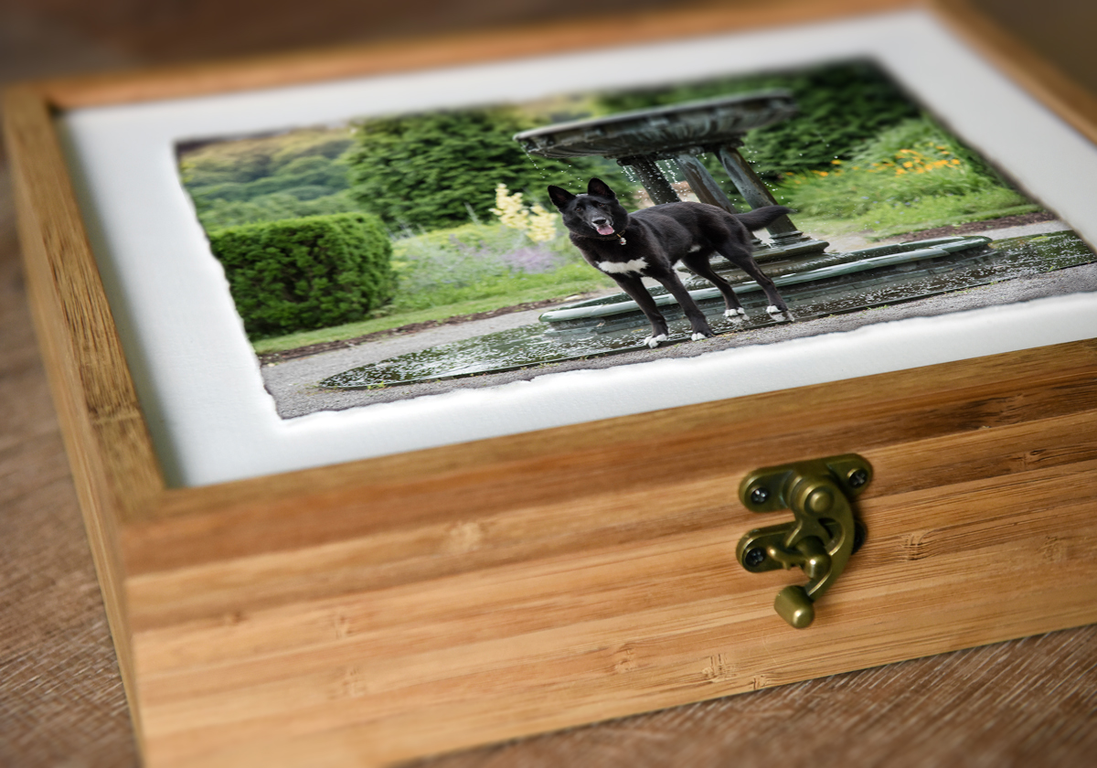 heirloom bamboo box with floating image lid