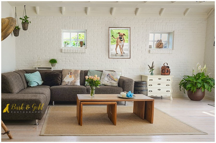 white brick living room with barnwood framed wall art above couch