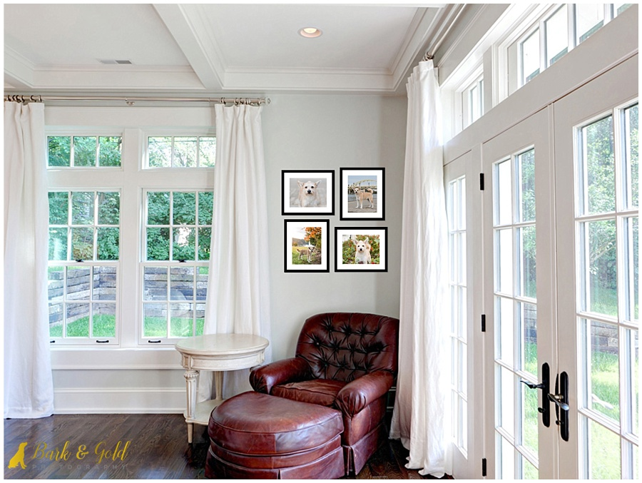 mutiple 11x14 framed prints in sun room on a small wall
