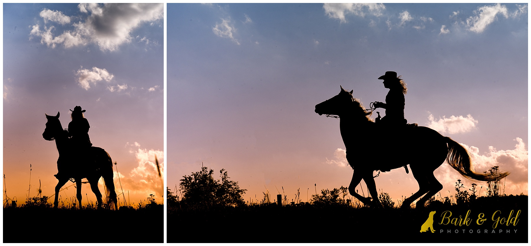 silhouette of a running horse with rider against a sunset sky