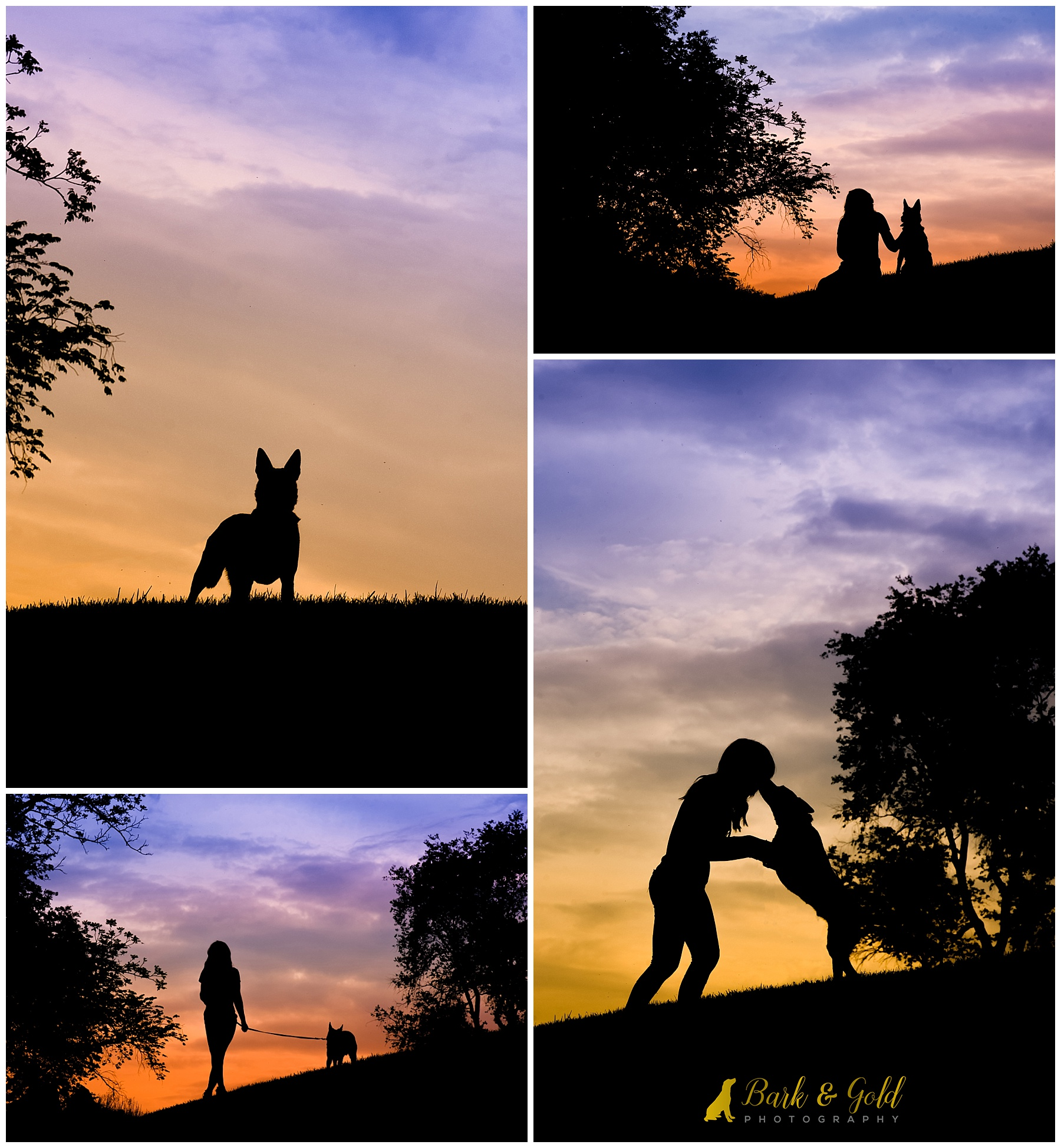 dog and owner connecting during a Silhouette Sunset Session at Mingo Creek Park