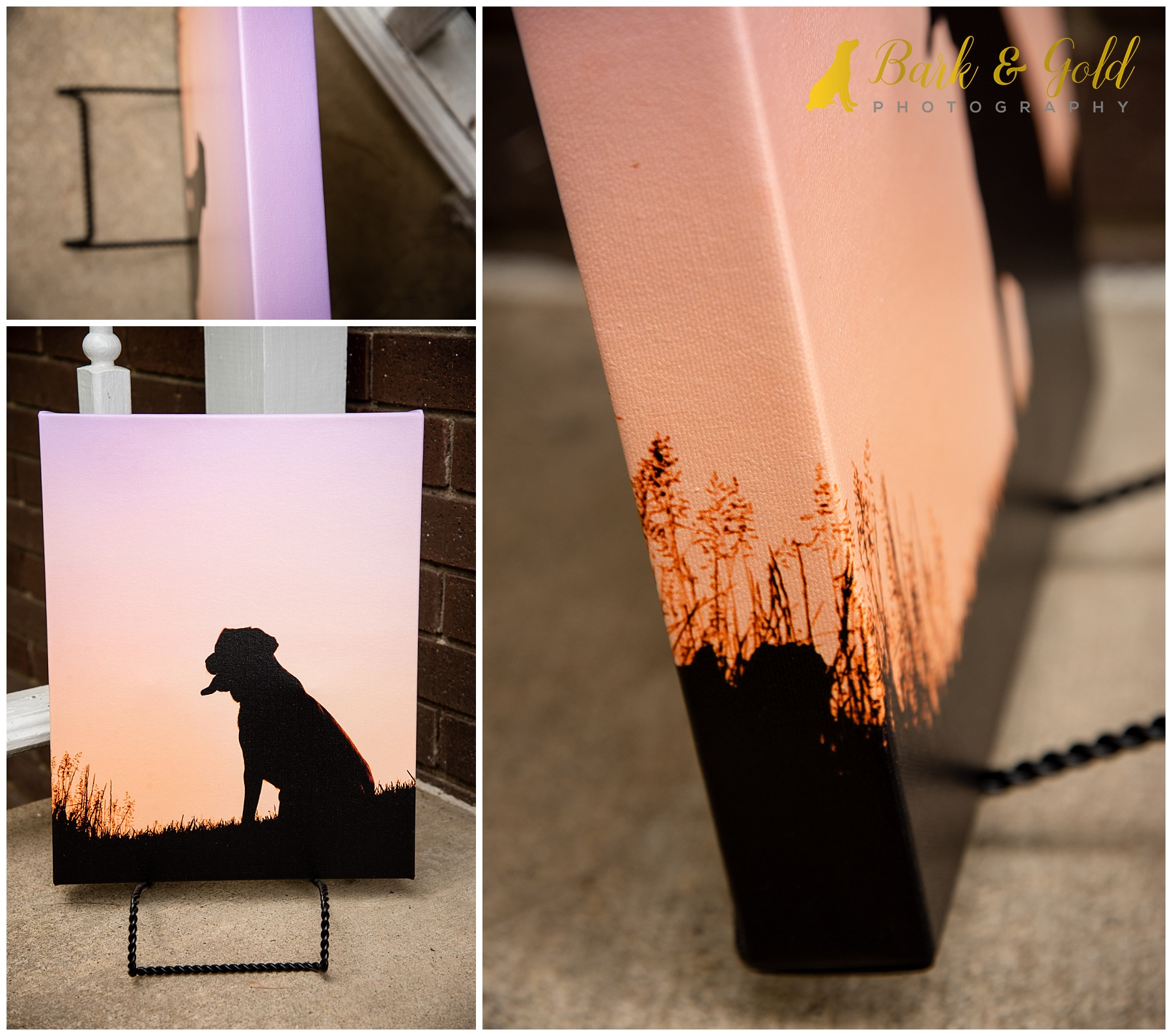 11x14 pink and orange gallery-wrapped canvas from a Silhouette Sunset Session