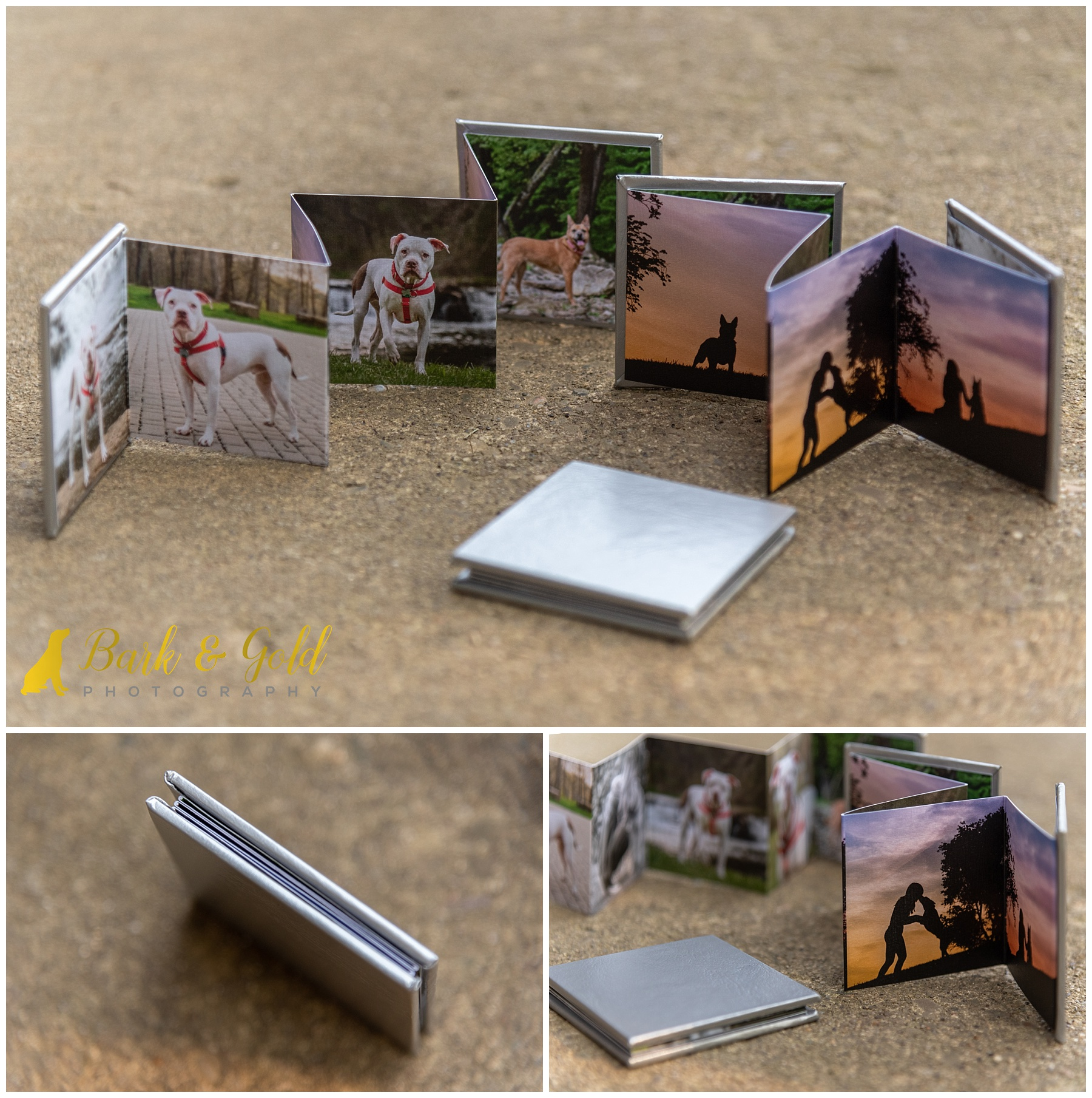 set of three mini accordion albums with silver leatherette cover and sunset images