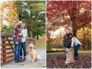 Sweet and Silly Golden Retriever Puppy's Fall Session - Mingo Creek Park