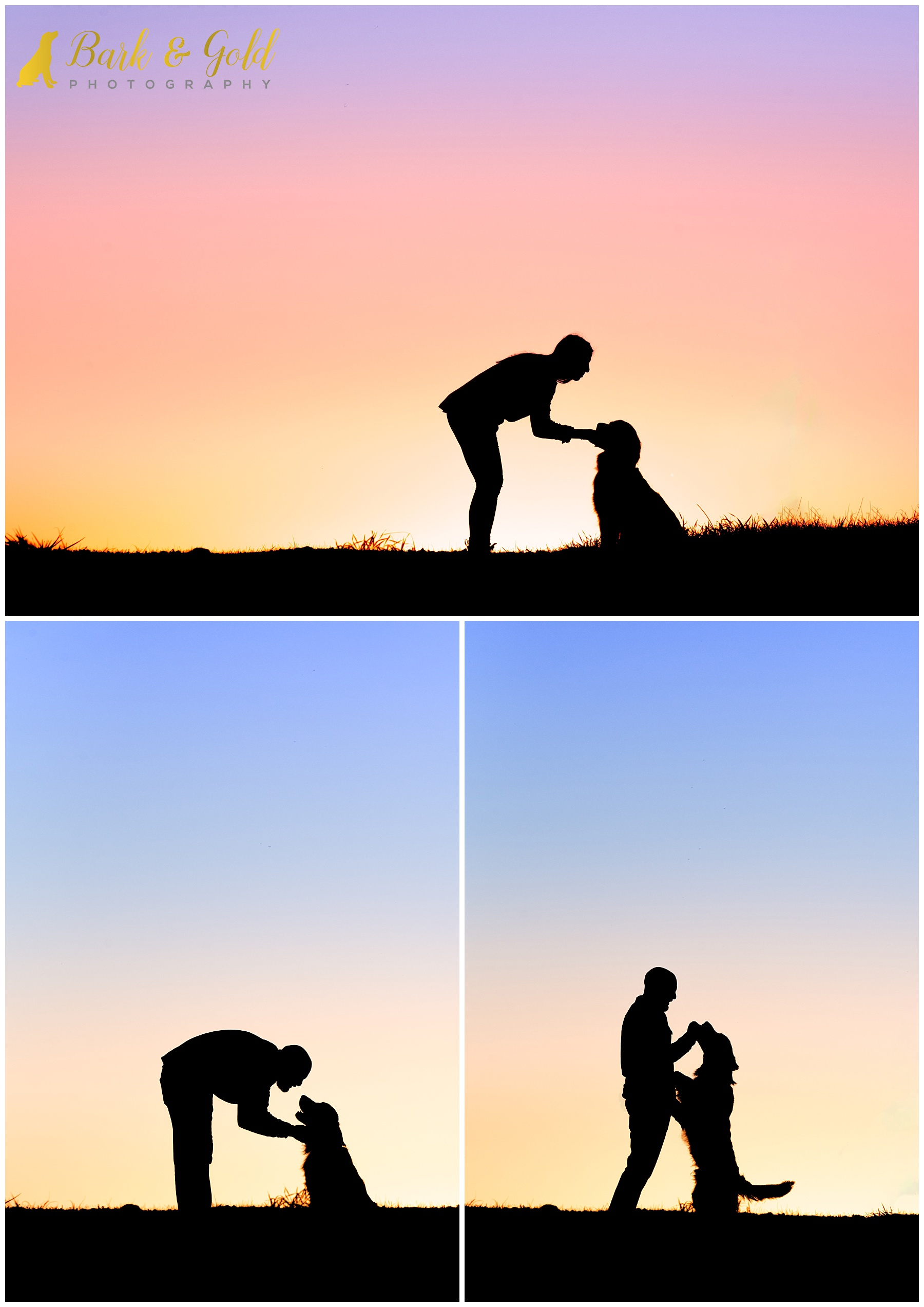 silhouette of golden retriever puppy and parents at Mingo Creek Park near Pittsburgh
