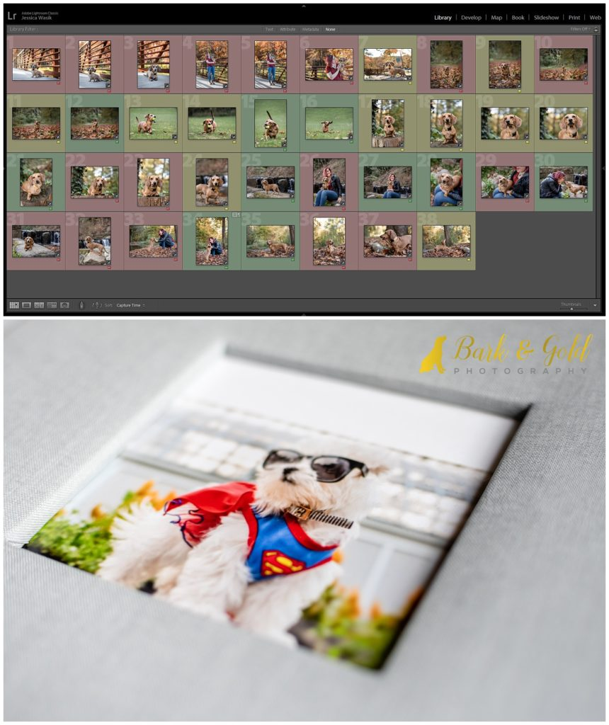 Lightroom gallery and product sample for reveal and ordering appointment