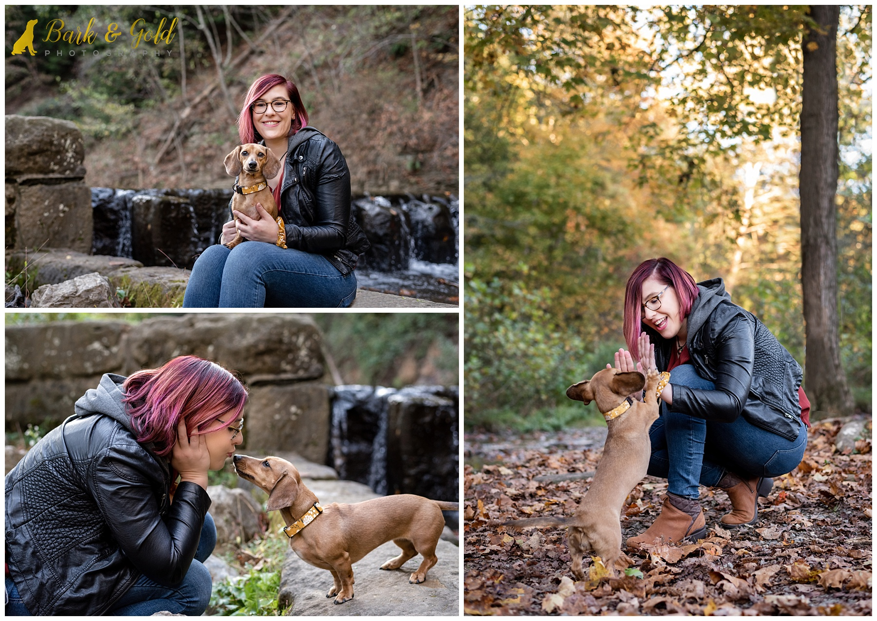 dachshund puppy cuddling and playing with owner at Brady's Run Park