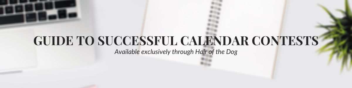 calendar contest guide banner