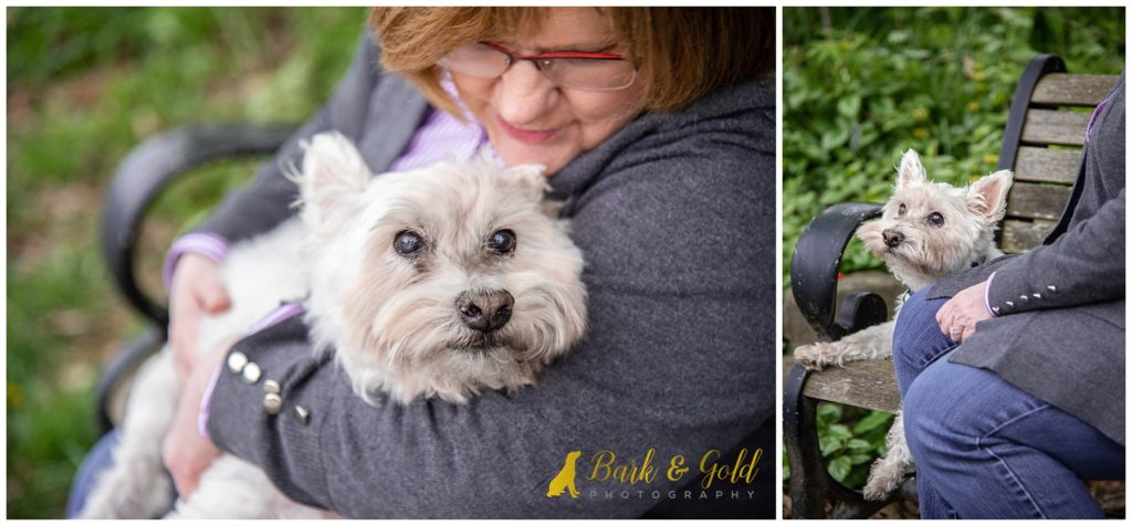 senior dog cuddles during Rainbow Session at Phipps Consservatory near Pittsburgh