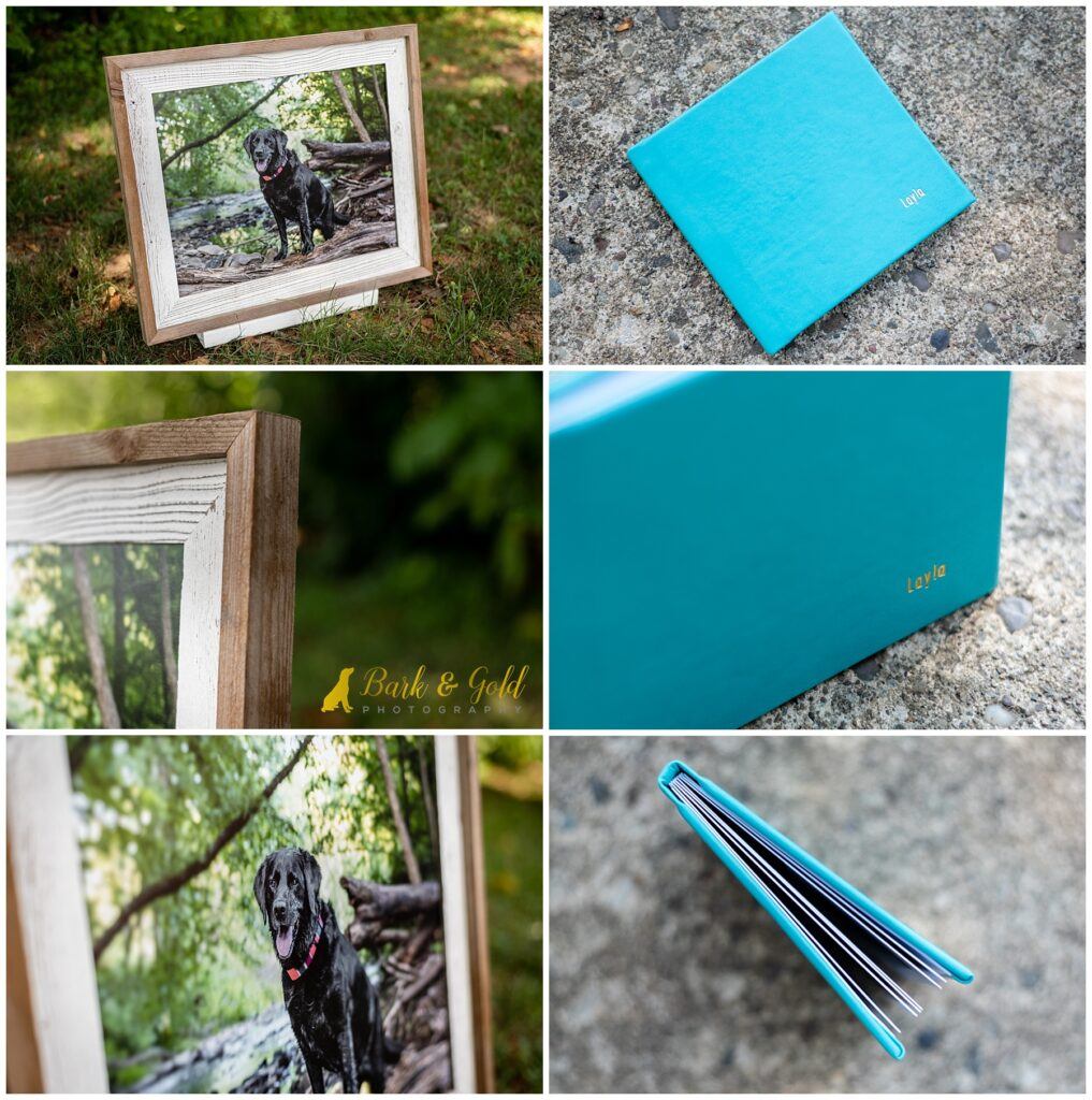 barnwood framed print and 5x5 signature book in teal