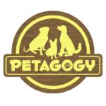 Petagogy logo