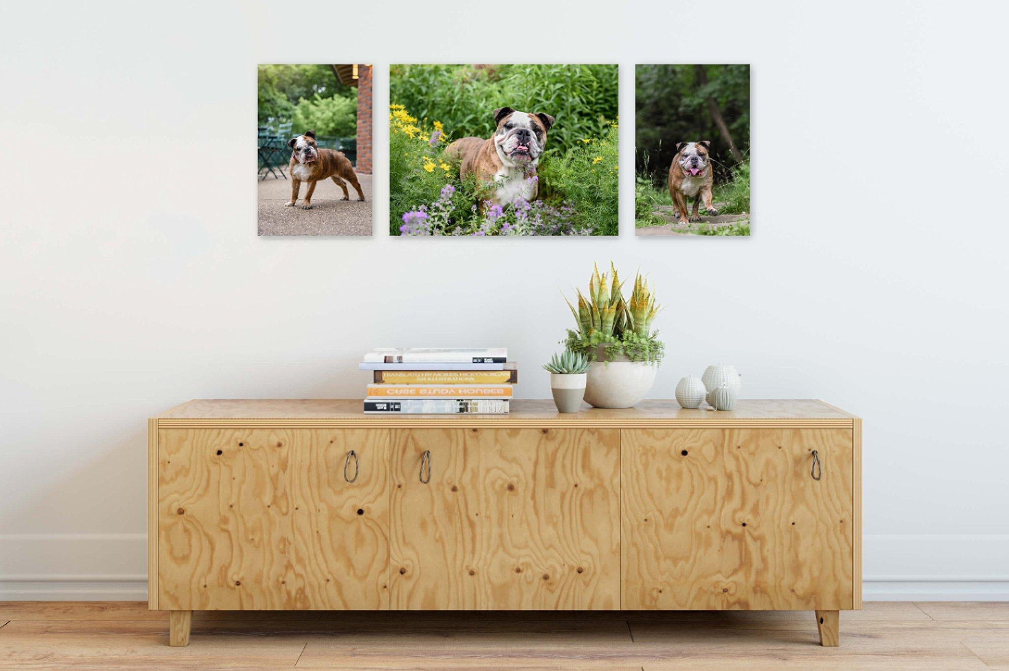 canvas trio over entryway table