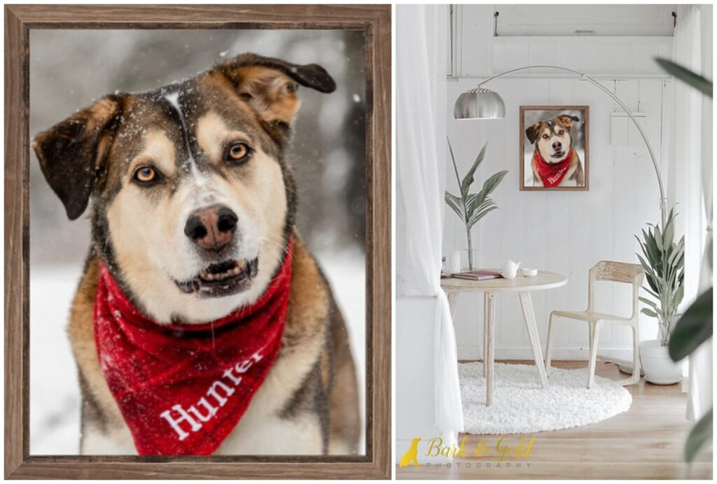 mockup of a barnwood framed canvas in a white rustic room