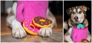 Healthy and Easy Homemade Peanut Butter Dog Donuts Recipe