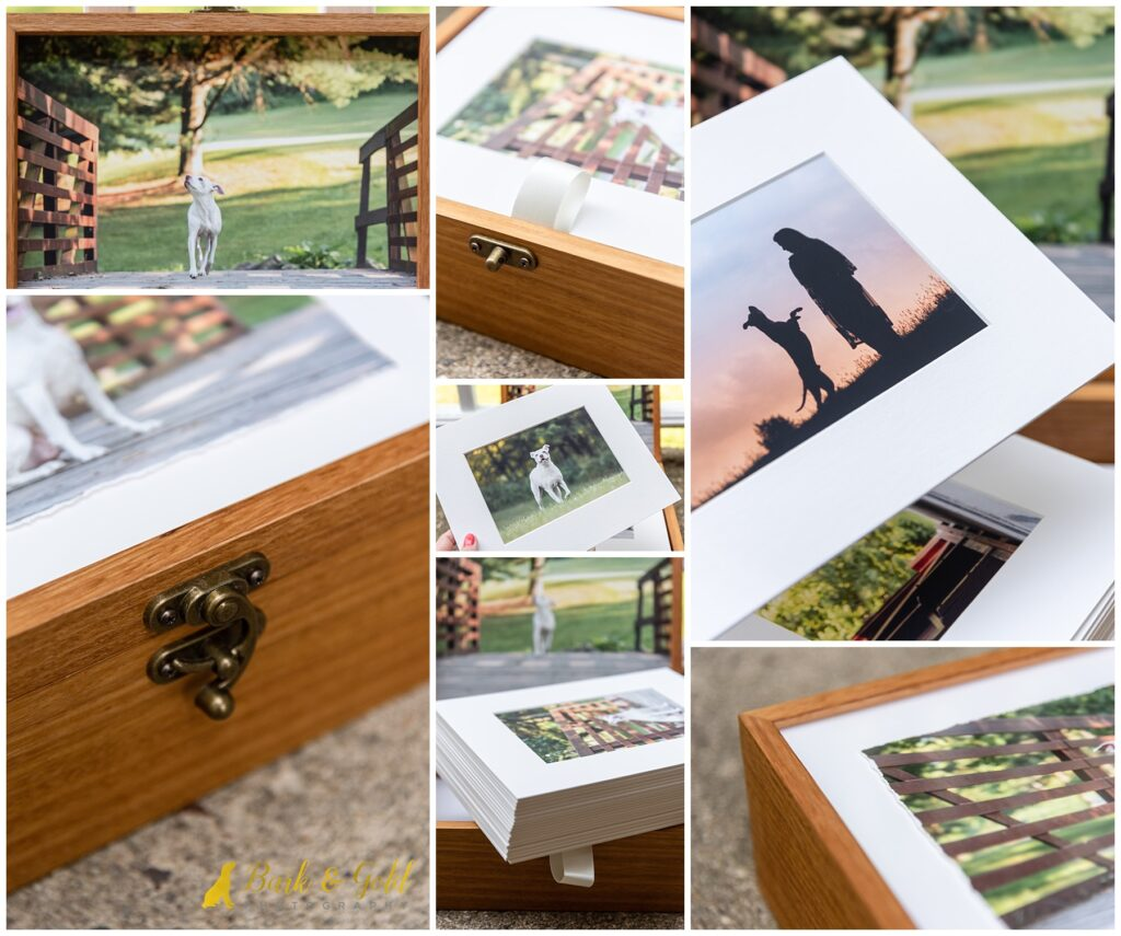bamboo heirloom folio box with 20 matted prints from a pit bull's session at Mingo Creek Park in Washington County